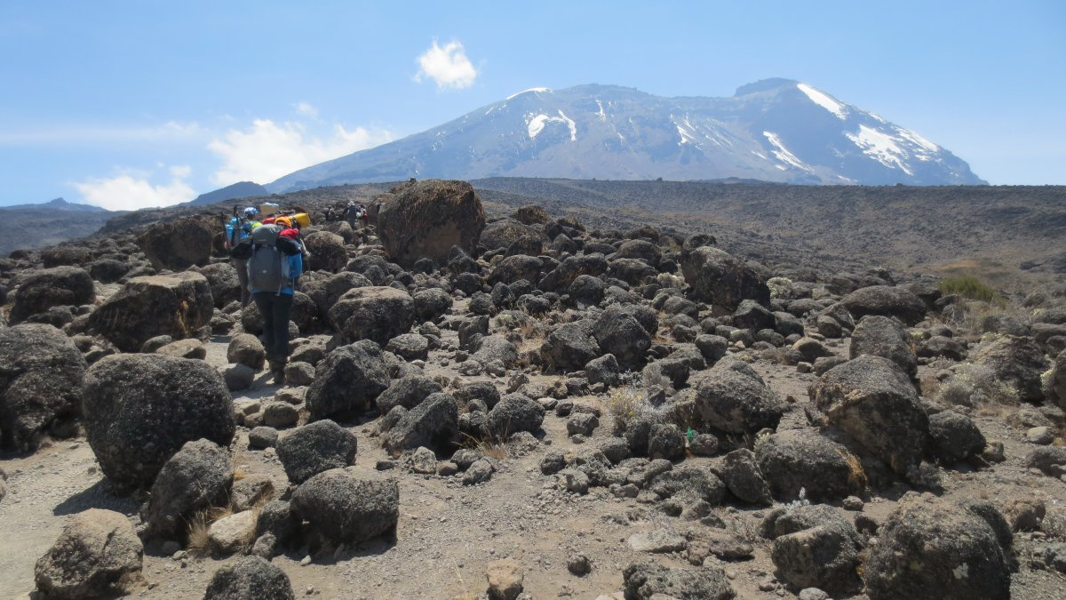 Picture of d3-Shira Camp to Barranco Camp-3900m